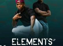 Assertive Fam - Elements LP