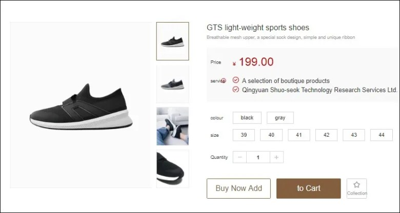 GTS Light-Weight Shoes