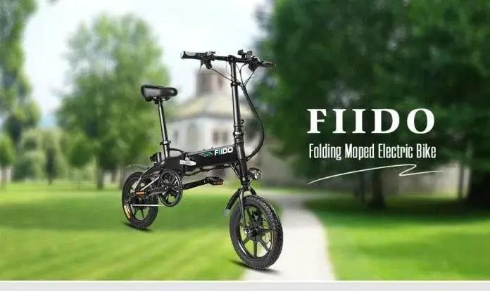 FIIDO D1 Folding Electric Bike