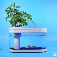 Xiaomi: παρουσίασε το πρώτο της... ενυδρείο, Xiaomi Fish Tank!!