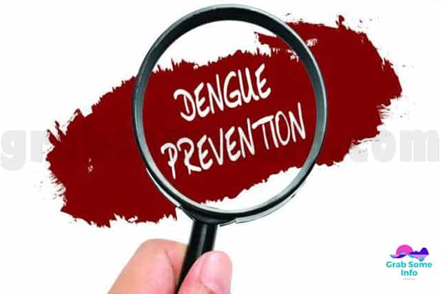 Dengue Precautions