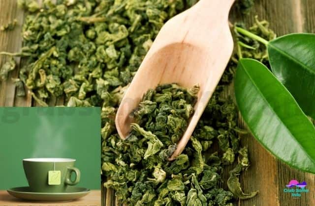 Green Tea Extracts and Leaves