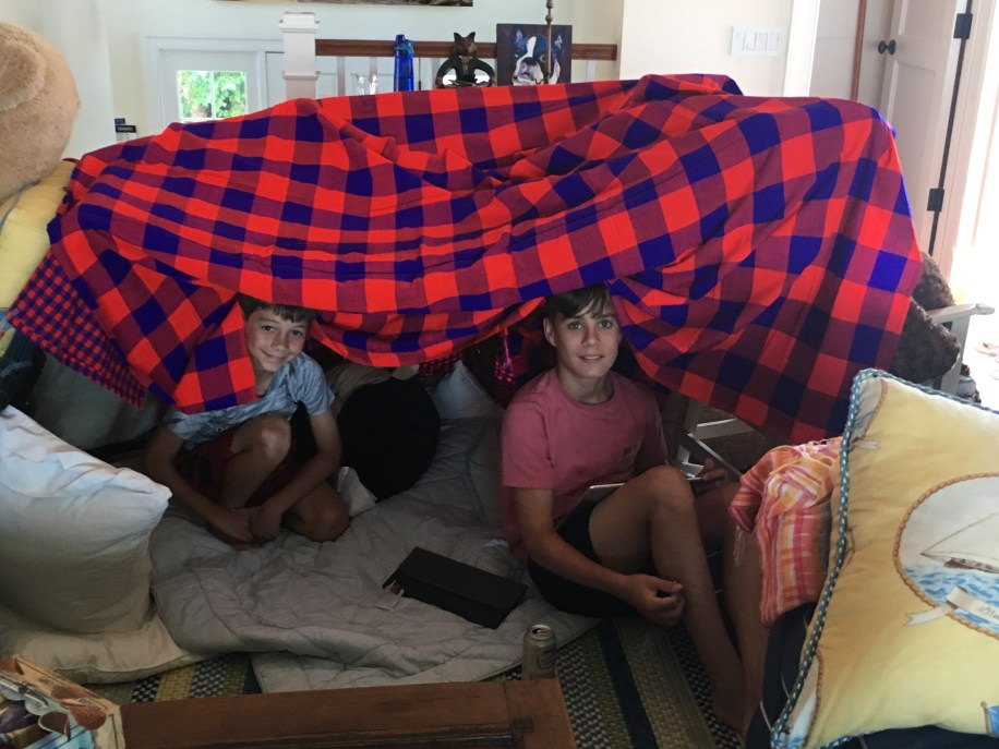 The boys and their fort!