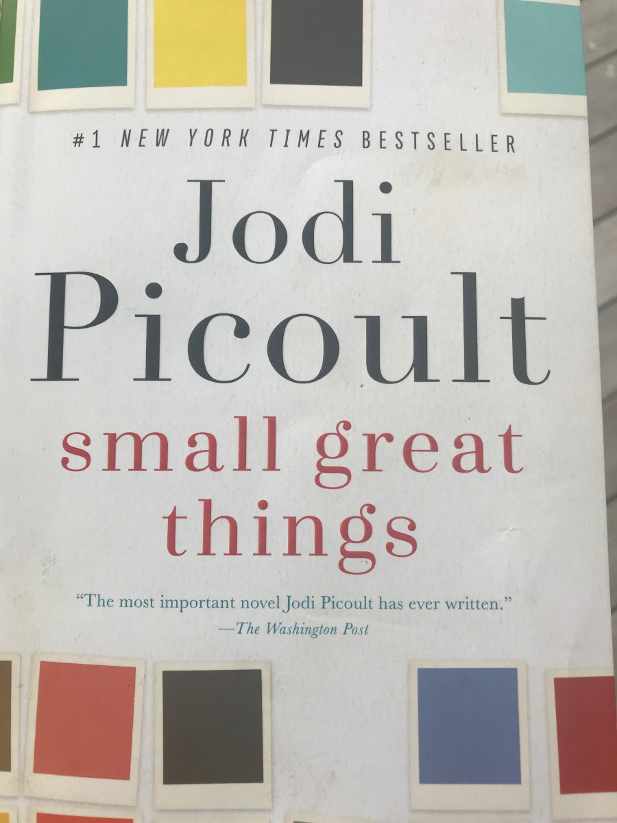 Summer Reading (Jodi Picoult) Inspired by Social Media (Wolfgang2242)