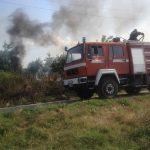 Opštinska inspekcija: Angažovano dodatno osoblje na sprečavanju paljenja strništa