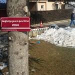 Најчистија јавна површина 2014