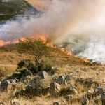 Ugašena tri požara na teritoriji Opštine Gračanica