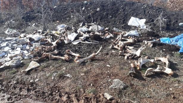 Ораховац: Плоча отетим новинарима седми пут срушена и ишчупана багером.