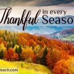 Tina Kachmar Thankful in Every Season