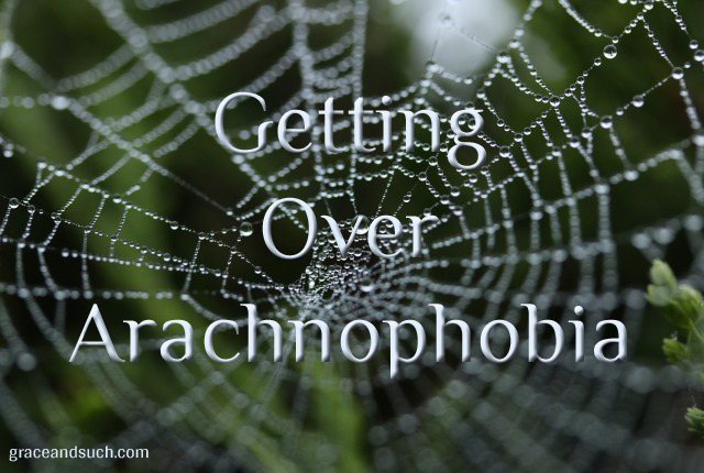 Getting Over Arachnophobia