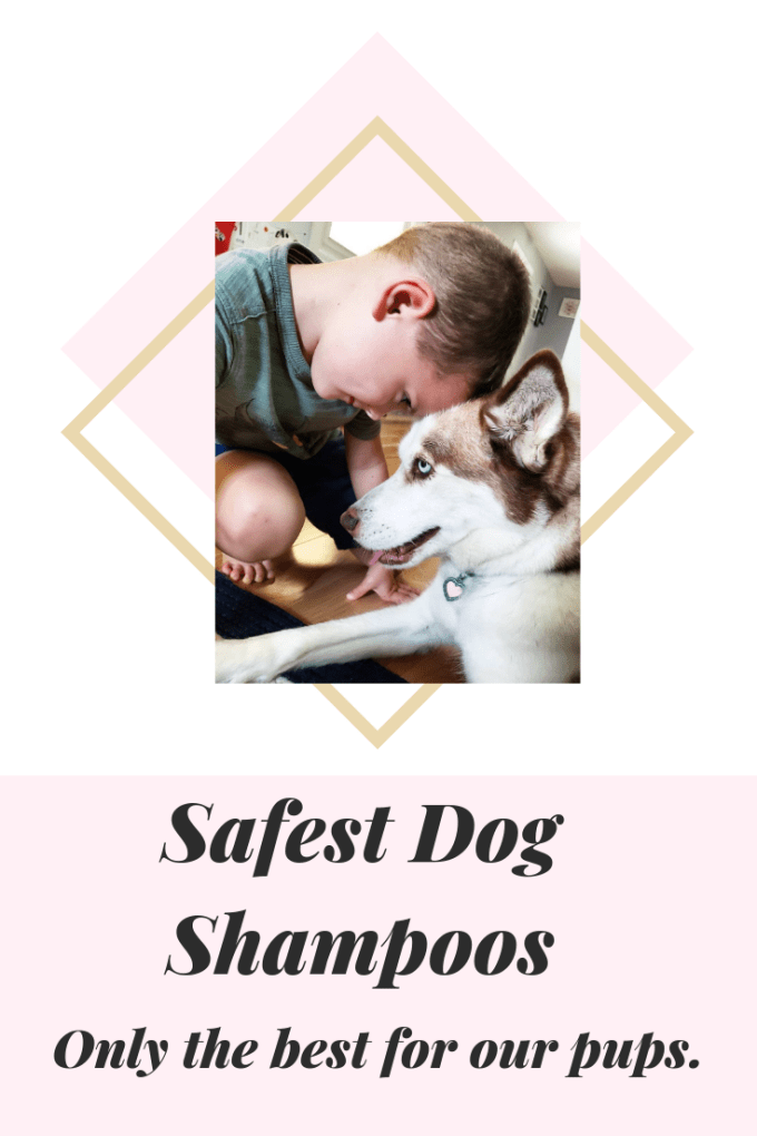 Take the very best care of your dog with the only synthetic and pesticide free shampoo with the safest ingredients available.