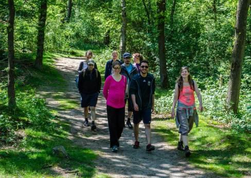 walk-woods-s