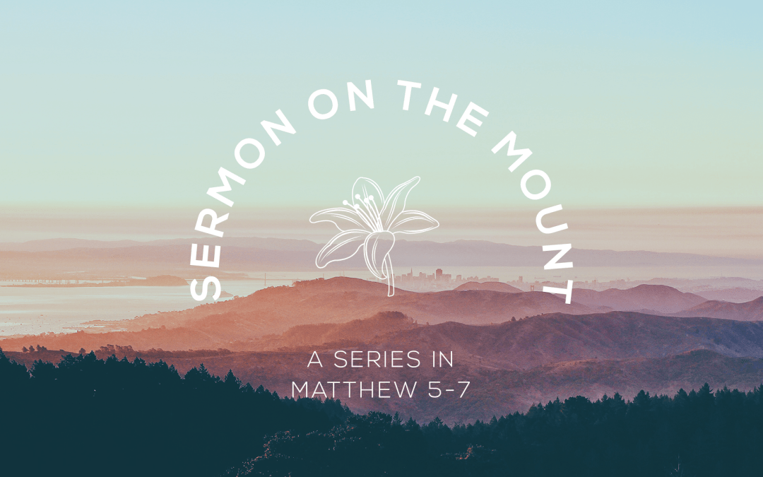 The Marks of a Believer 1.5.20 SERIES: The Sermon on the Mount