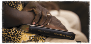 BIBLE invested-in-bible-translation