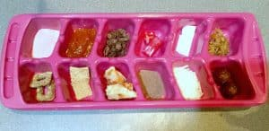 food in ice cube tray