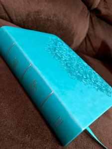 teal bible