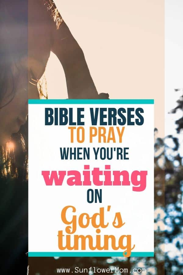 Bible Verses You Need in a Season of Waiting