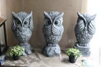 Owls inside Smits & Bits