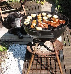 Barbecue to the Rescue