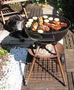 Barbecue to the Rescue