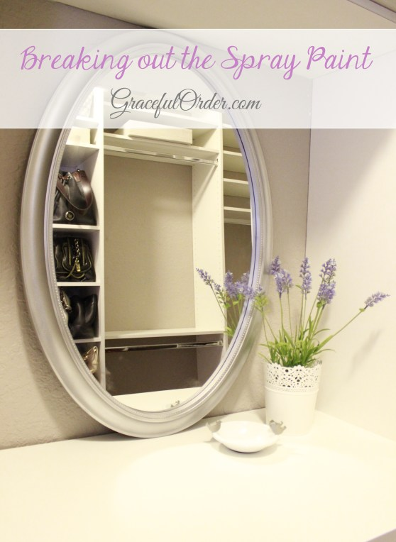 Spray Paint Mirror4