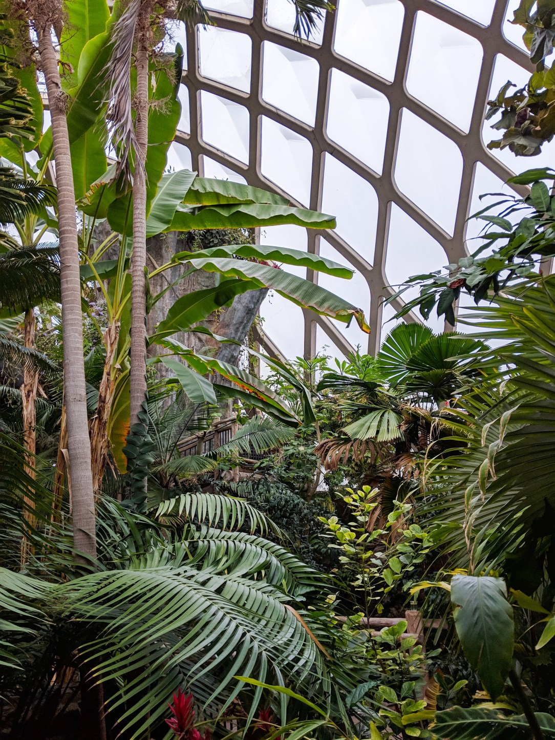Denver Botanic Gardens, Denver travel guide