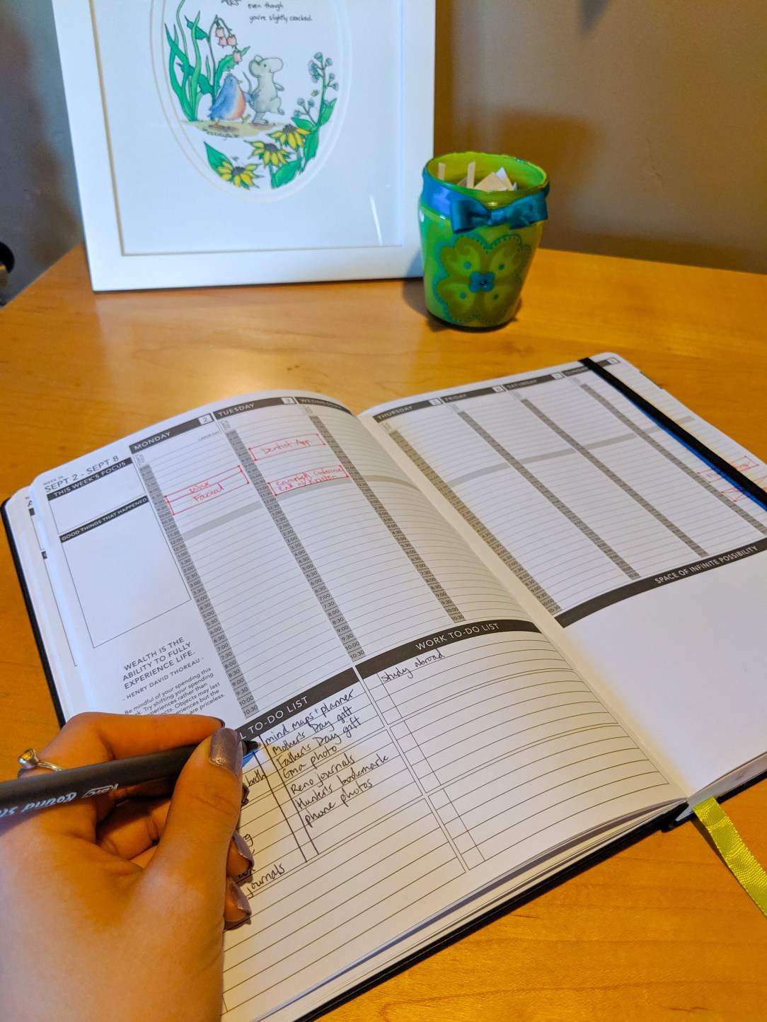 planners, daytimers, college student, goal setting