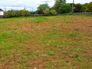 barren garden illustrating the front page of a website about gardens and gardening