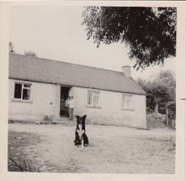 old photo of a Irish farm house with three women and a dog