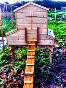 wooden handmade chicken tractor