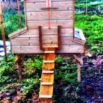 wooden handmade chicken tractor