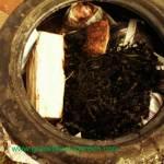 tyre-log-seaweed
