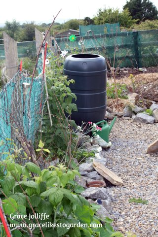water-butt-in-permaculture-garden