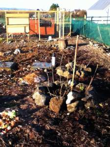 rocky bed on bad soil illustrating an article about permaculture