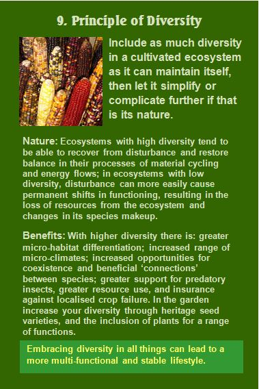 Permaculture Principle of Diversity Card 9