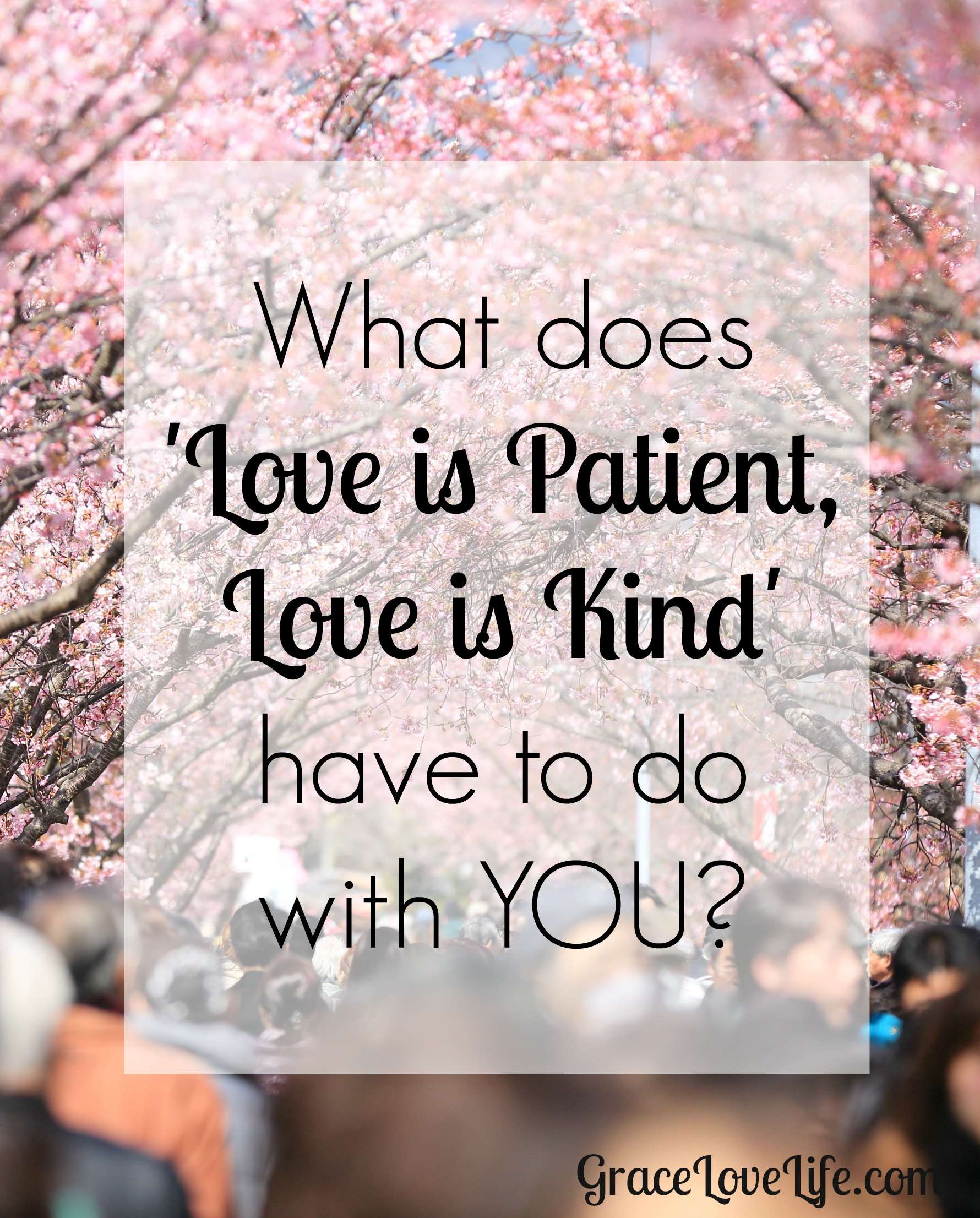 What Does Love Is Patient Love Is Kind Have To Do With