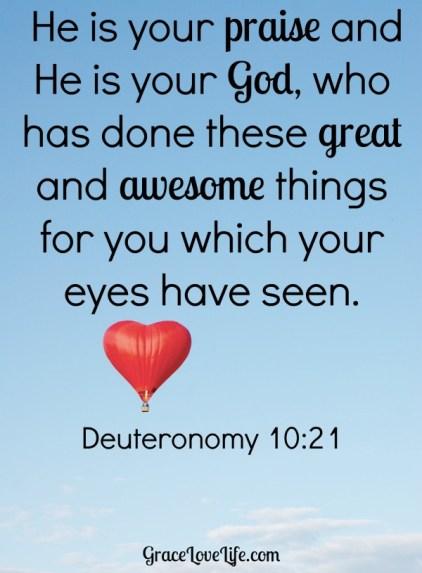 Deuteronomy 10-21