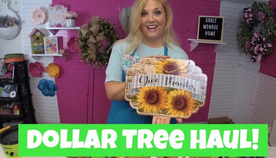 Dollar Tree Haul – August 2019