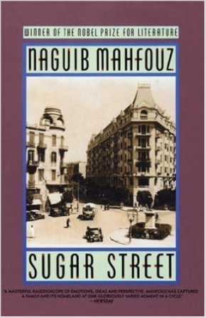 Cairo Trilogy http://www.amazon.ca/Sugar-Street-CAiro-Trilogy-3/dp/0385264704/ref=sr_1_fkmr2_2?ie=UTF8&qid=1451375950&sr=8-2-fkmr2&keywords=cairo+trilogy+mahfouz+kindle