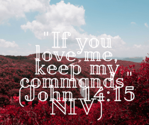 If_You_Love_Me_Keep_My_Commands_John_14:15