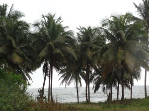 Beautiful Scenery on the southern coast of Liberia