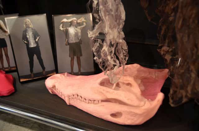 Wonder Anatomie Gracie Opulanza