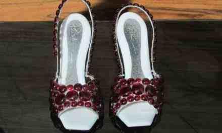 Glass Slippers – Cinderella's Exhibition