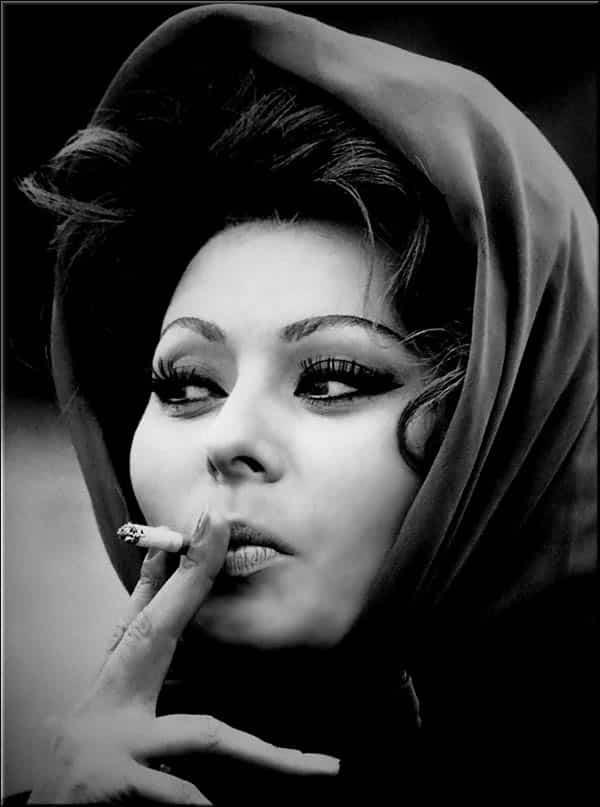 Cat In Fall Wallpaper White Sophia Loren La Bella Fashionista Amp Fashion Icon