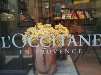 Loccitane-en-provence-9