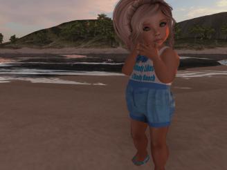 shady beach_001