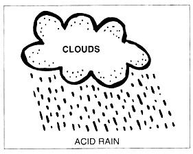 Acid rain research paper Sample for free