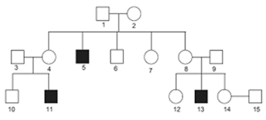 Study the given pedigree chart and answer the questions