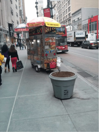 Figure 5: Food Cart Next to Planter on 34th Street near Penn Station. Source: Jones (2014)