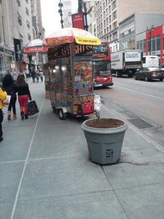 Figure 5: Food Cart Next to Planter on 34th Street near Penn Station. Source: Jones (2014)